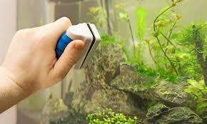 10 Best Aquarium Magnet Cleaners Reviewed Rated In 2019