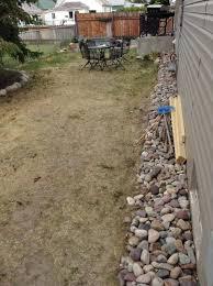 Lawn Free Backyard