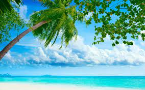 Tropical Beach Resorts Ultra HD Desktop ...