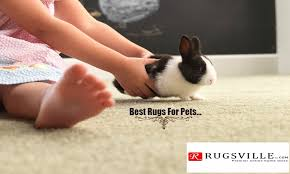 if you are also facing this type of problem then here we are we have some good best pets rugs and carpets for solving your problems