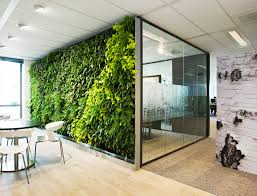 green wall office. Plant Wall In The Office Green