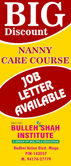 Nanny Care Course Job Letter Available Bulleh Shah Institute
