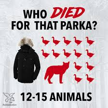 animal justice these eight free canadian coats will keep you warm this winter