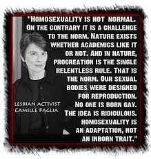 Gay is not normal