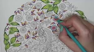 secret garden coloring book peacock you tutorial free finished pictures using pencil crayon