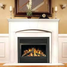 napoleon gas fireplaces alternative views napoleon gas fireplace owners manual