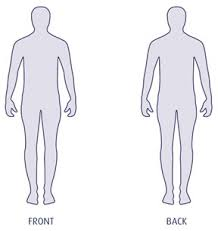 Human Body Outline Clipart Male 20 Free Cliparts Download