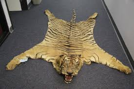 bengal tiger rug new jersey federally protected