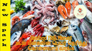 Seafood Fish Names in Tamil / Different ...