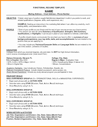 Resume Templates Google Docs Beautiful Functional Resume Template