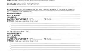 Killer Resume Samples How To Write Marketing Target