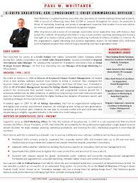 executive bios the top ways to use one sample executive bio