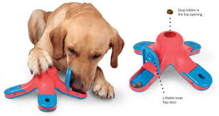 anxiety toys for dogs. Brilliant Toys Want Ways To Ease Separation Anxiety And Boredom For Your Dog Why Not  Stimulate His Or Her Mind Possibly While You Are Off At Work School  And Anxiety Toys For Dogs Cappau0027s Kennel