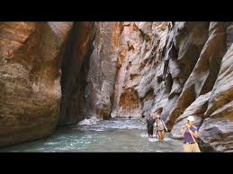the narrows in zion national park near springdale utah is a section of canyon on the north fork of the virgin river the hike of the narrows is one of