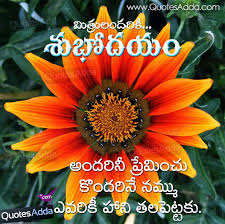 Good Morning Life Quotes In Telugu Daily Motivational Quotes