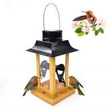 Solar Light Bird Feeder Amazon Com Umiwe Solar Light Bird Feeder Solar Energy Led
