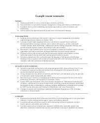 Examples Of Summary On Resume Professional Resume Summary Examples Thrifdecorblog Com