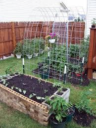 diy raised garden plants