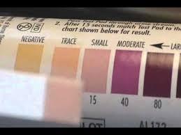 True Plus Ketone Test Strips Color Chart Ketone Test Strips For Low Carb Diets Ketosis Diets