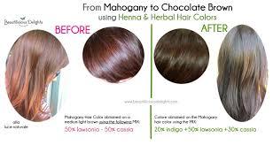 Dye Your Gray Hair Chocolate Brown Using Henna Henna Before