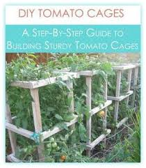Diy tomato cage Prepare Stepbystep Guide To Building Sturdy Tomato Cages Get Busy Gardening Building Sturdy Tomato Cages Get Busy Gardening