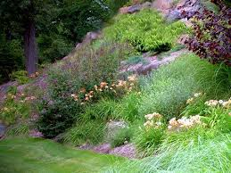 Small Picture Landscaping Steep Slopes Hillside Landscapes