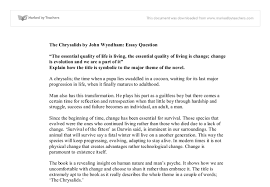 the chrysalids by john wyndham essay questionn gcse english  document image preview