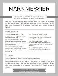 resume examples profil strengths awards hockey resume template personal  data and informations work experience training -