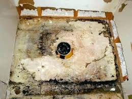 remove mold from bathroom ceiling. How To Remove Mold From Bathroom Ceiling With Vinegar O