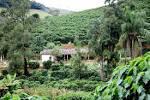 imagem de Bom Jardim Rio de Janeiro n-16