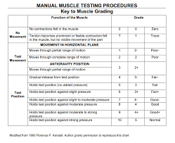 Orthopedic Assessment Chart Manual Muscle Testing Grading Chart Florence Kendall
