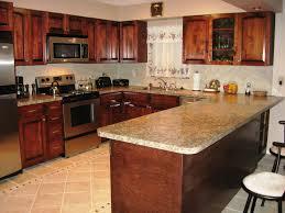 Birch Wood Kitchen Cabinets Natural Birch Kitchen Cabinets New Furniture Birch Kitchen