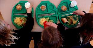 school dinners serving up a food sermon books essays food  essays school dinners serving up a food sermon