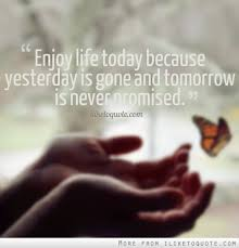 Today Quotes About Life Gorgeous Enjoy Life Today Because Yesterday Is Gone And Tomorrow Is Never