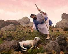 Resultado de imagen para parábola de la oveja perdida