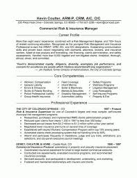 Sample Insurance Resume Insurance Agent Resume Sample Resume