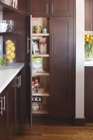 Pantry For A Small Kitchen Pantries For Small Kitchens Home Design And Decorating