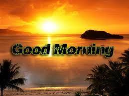 Good Morning Shayari Wallpaper Download ...