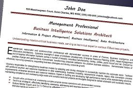 resume writing for it professionals professional resume service