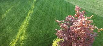 Mowing Patterns Classy Six Tips To Make Lawn Mowing Better For Your Lawn And Easier On You