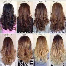 Level 6 Hair Styles Hair Beauty __cat__ Balayage Hair