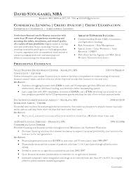 Resume For Credit Analyst Resume Credit Analyst Stunning Credit
