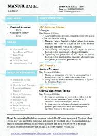 One Page Resume Template Word Enchanting Single Page Resume Template Word Clntfrdco