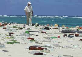 You Are What You Eat: Plastics and <b>Marine</b> Life