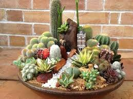 Small Picture Succulent Dish Garden With Ornaments Caring Tips For A Dish