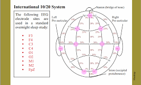 10 20 System Polysomnography Study Guide