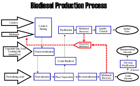 Biodiesel Production Chart Biodiesel Production And Quality Yongrun