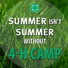 Image result for 4-h sayings and quotes