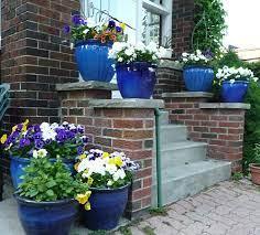 colour story blue flower pots