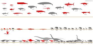 Dinosaur Sizes Comparison Chart Megafauna Size Comparison Chart By Sameerprehistorica